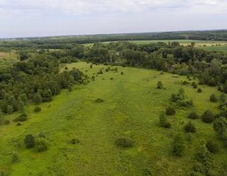 $275,000 | 44 Acres Black Hawk County