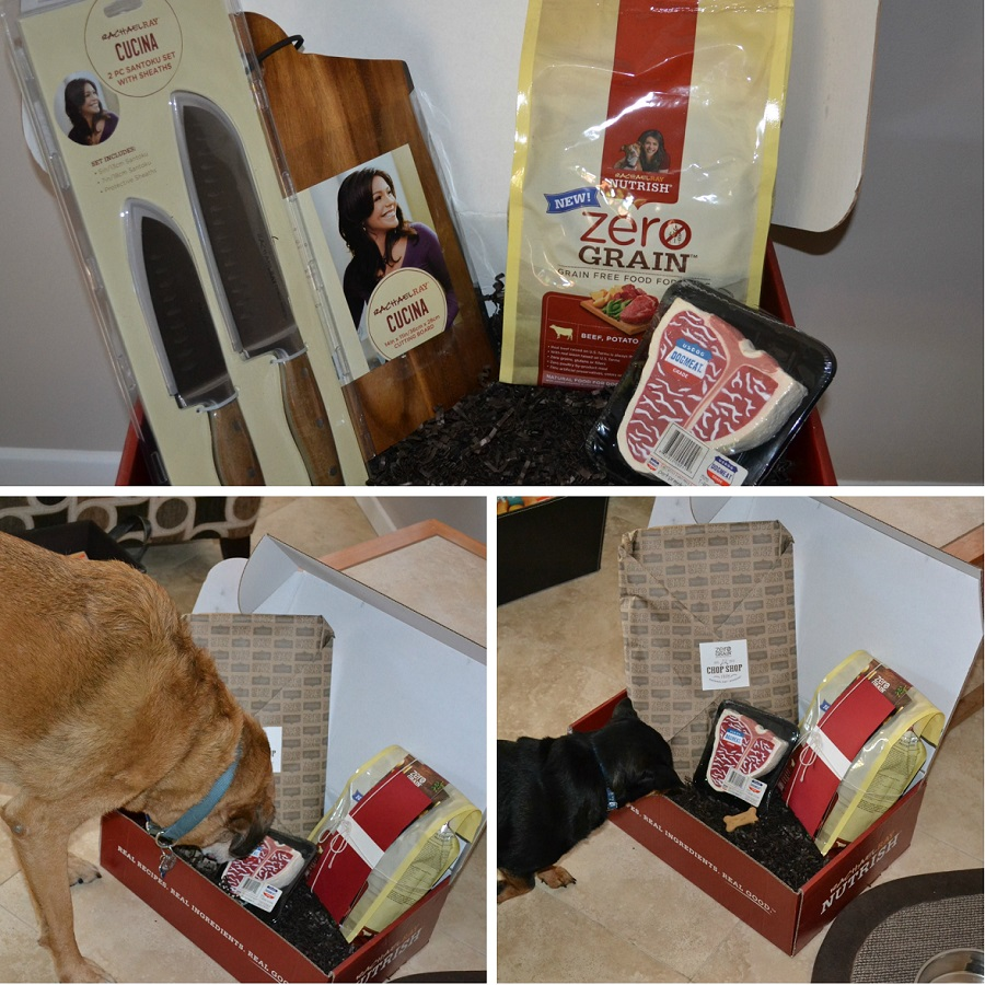 Cubby and Wrigley checking out their package.