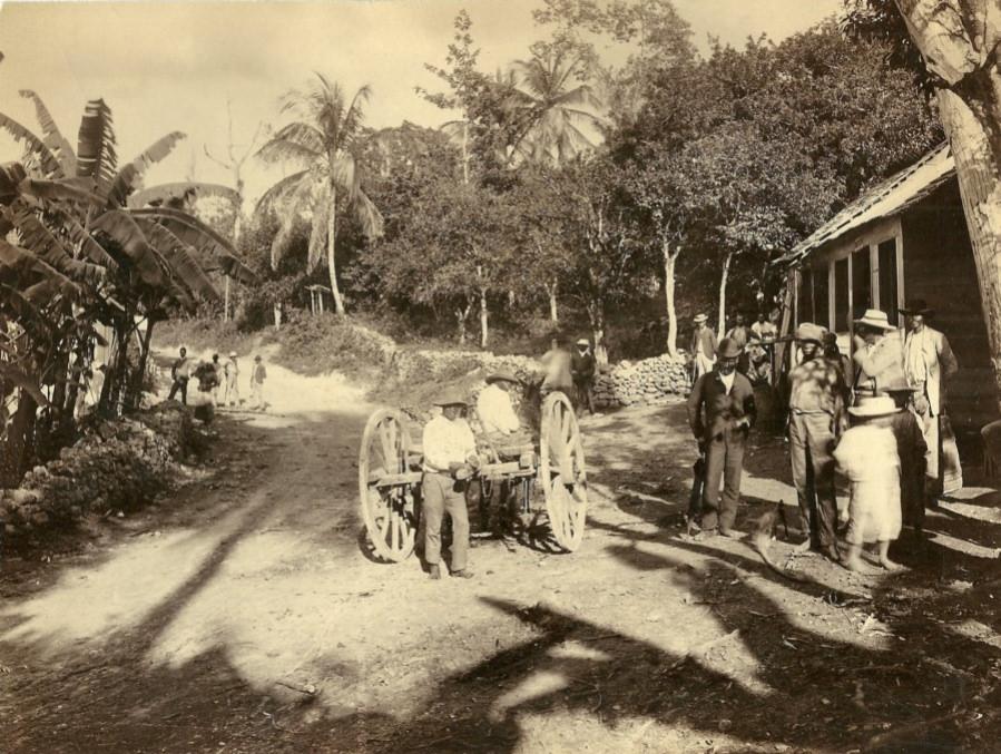 Jamaica before 1900 (20)