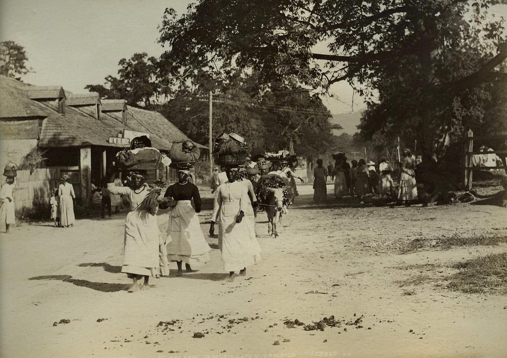 Jamaica before 1900 (23)