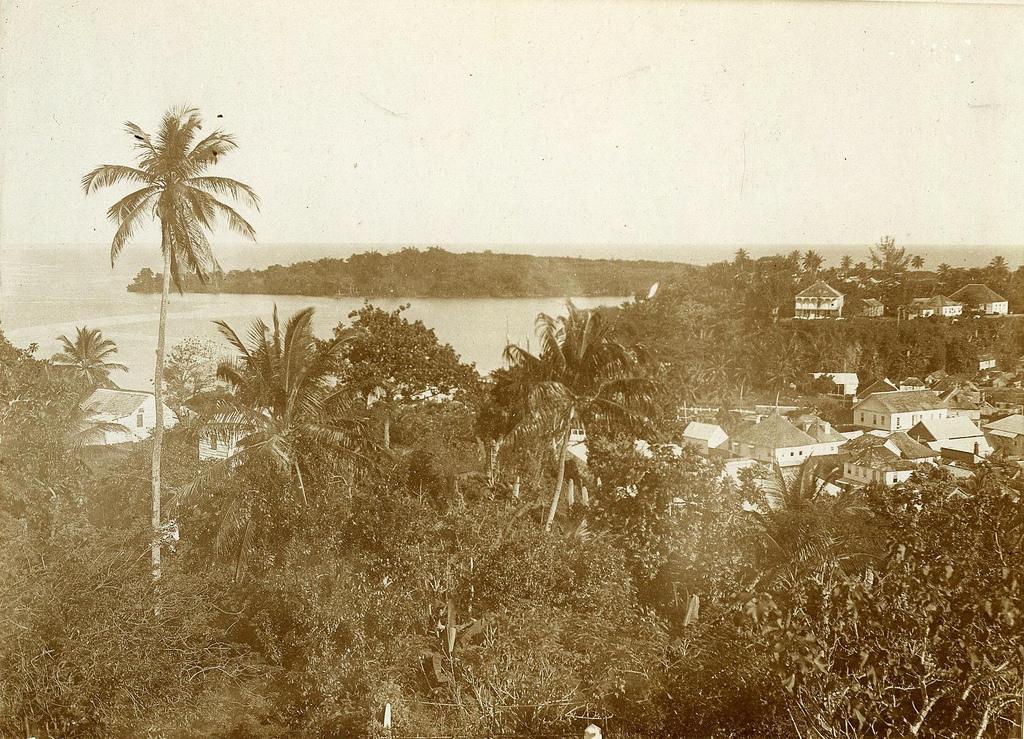 Jamaica before 1900 (25)
