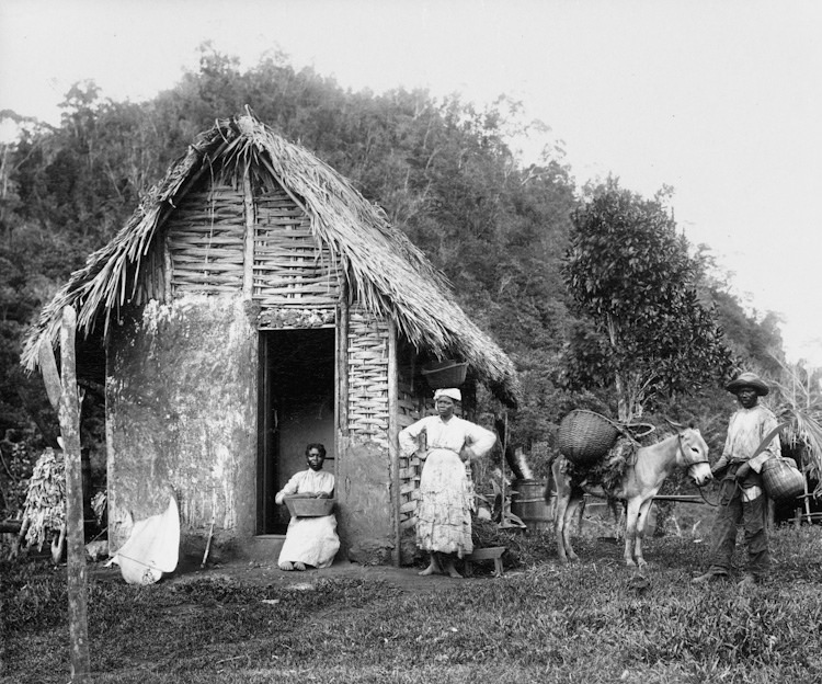 Jamaica before 1900 (28)