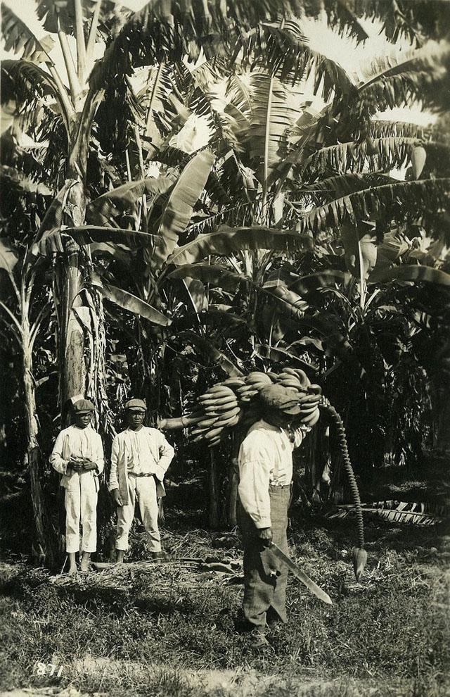 Jamaica before 1900 (3)