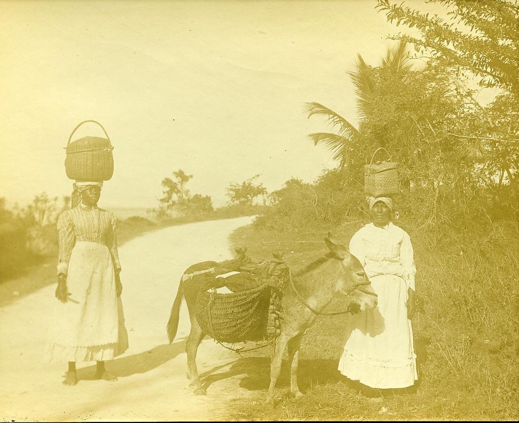 Jamaica before 1900 (33)