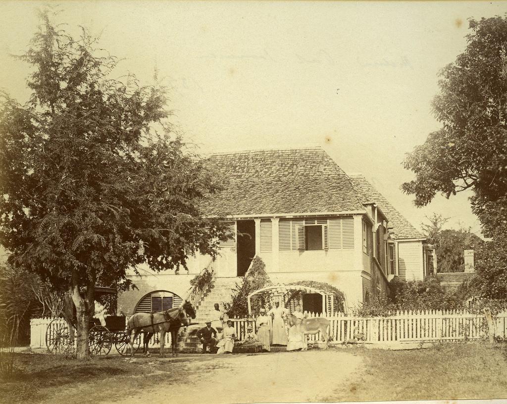 Jamaica before 1900 (34)