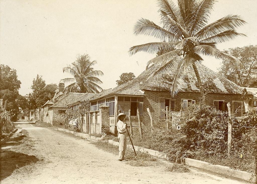 Jamaica before 1900 (35)