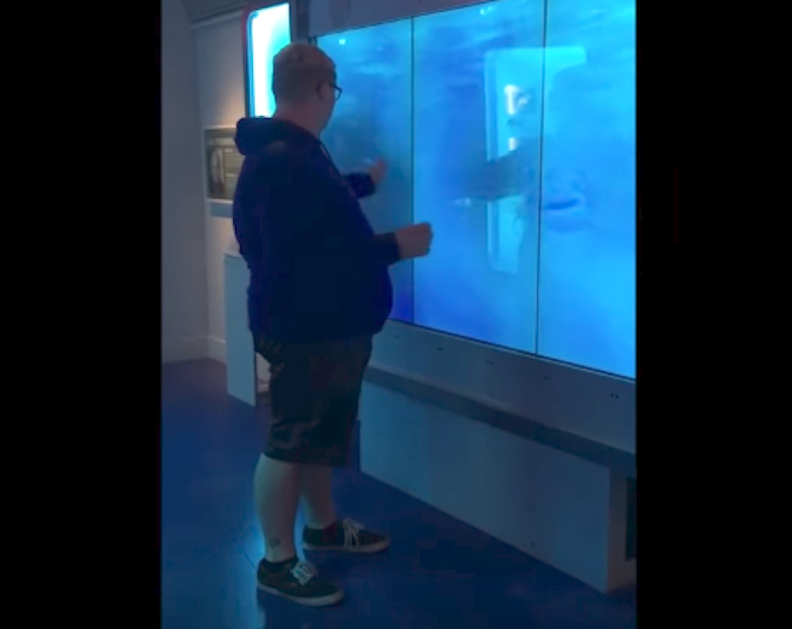 Man Touches Glass At Aquarium Display, Seconds Later Knocked To His Feet In Sheer Fright 2