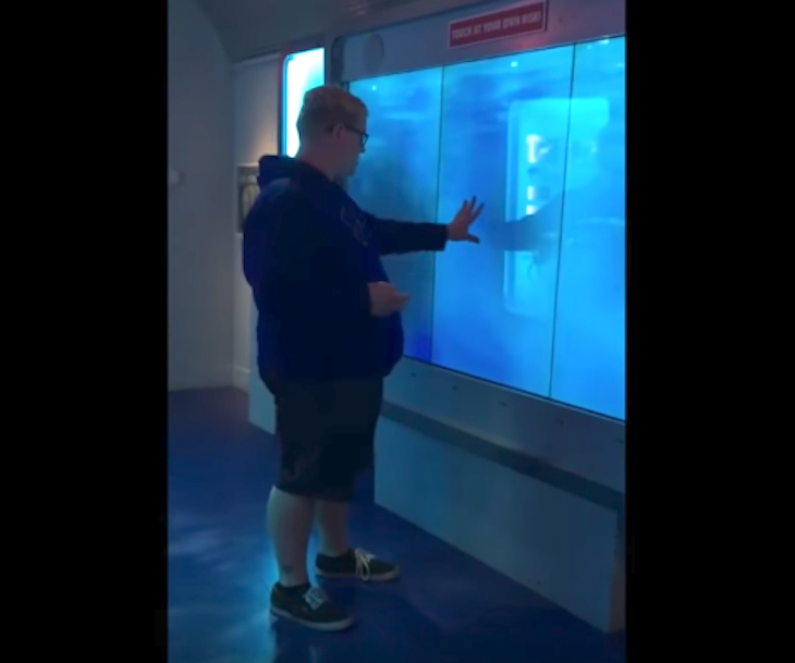 Man Touches Glass At Aquarium Display, Seconds Later Knocked To His Feet In Sheer Fright 1