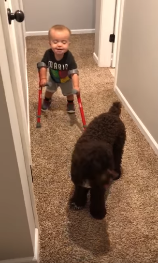 Boy With Spina Bifida Walks On Crutches And Shares Excitement With His Best Mate Dog 1