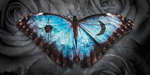 Matthew Parker Announces New Album Details Daydreamer