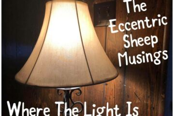 The Eccentric Sheep Musings: Where The Light Is