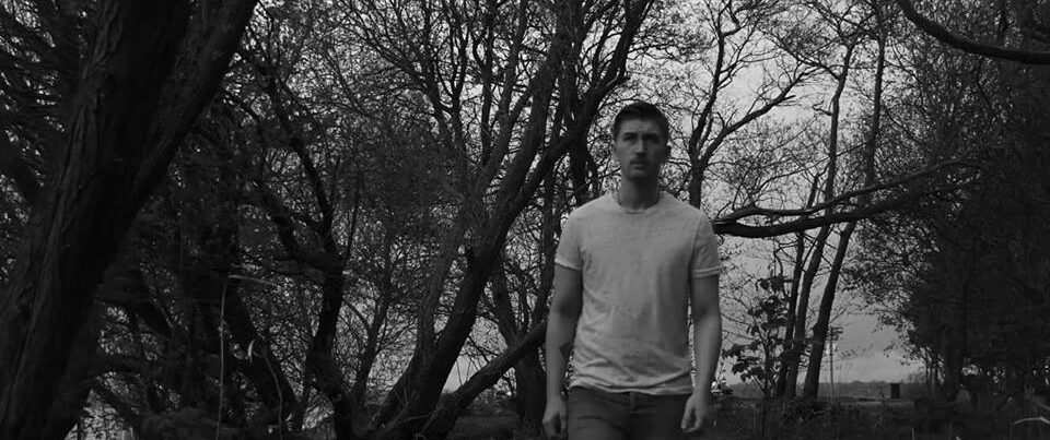 Foldinglights Releases Roses Video