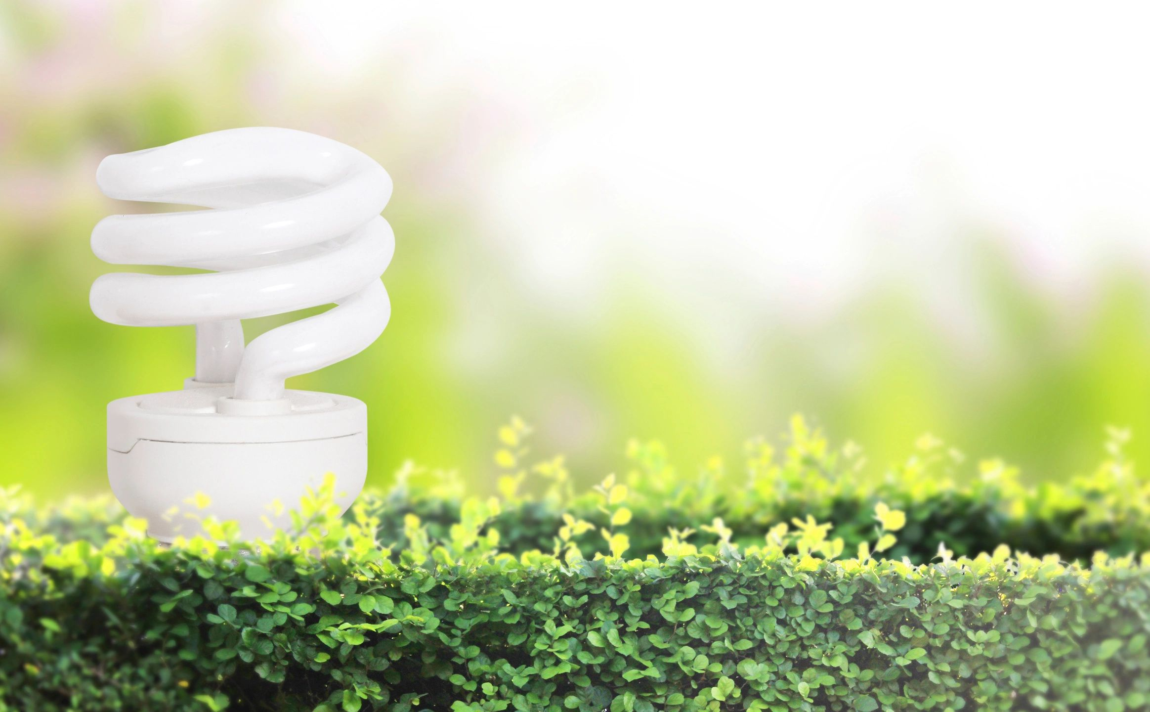 Geothermal Green Energy Lightbulb