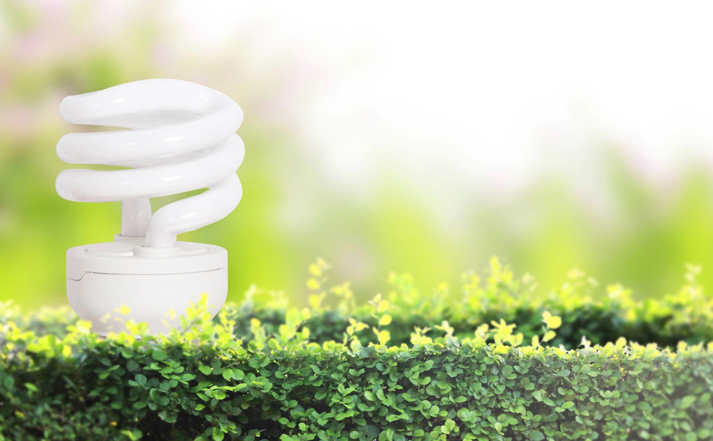 Geothermal Green Energy Lightbulb