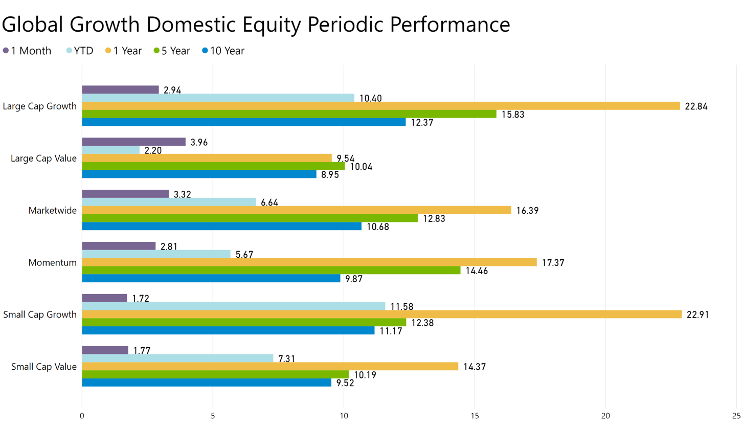 Global Growth Domestic Equity Performance