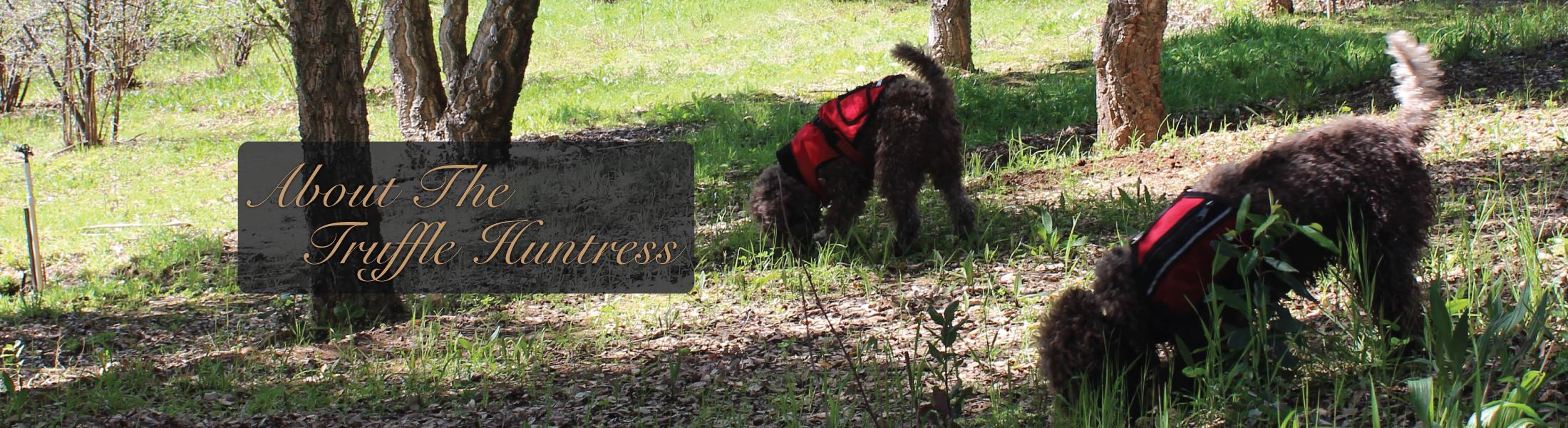 Mila The truffle Huntress
