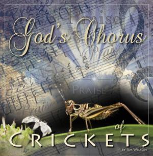 chorus of crickets