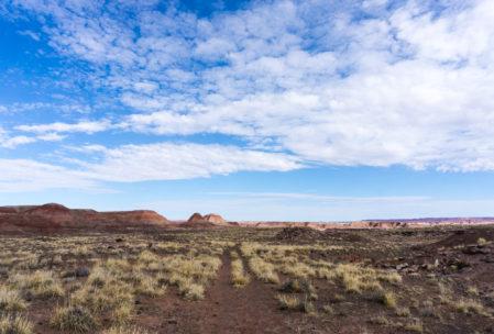 Still desert.
