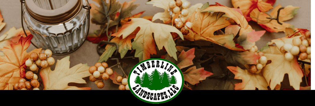 Happy Thanksgiving – November, 2019