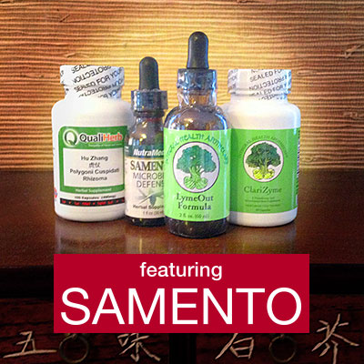 Chronic-Lyme-Simple-Solution-package