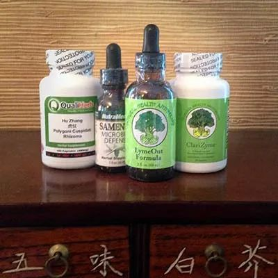 chronic-lyme-extra-strength-care-product-package-simple-solution