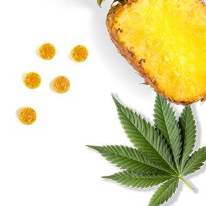 Pineapple Real Fruit Gummies