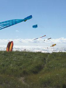 Kites on Long Beach