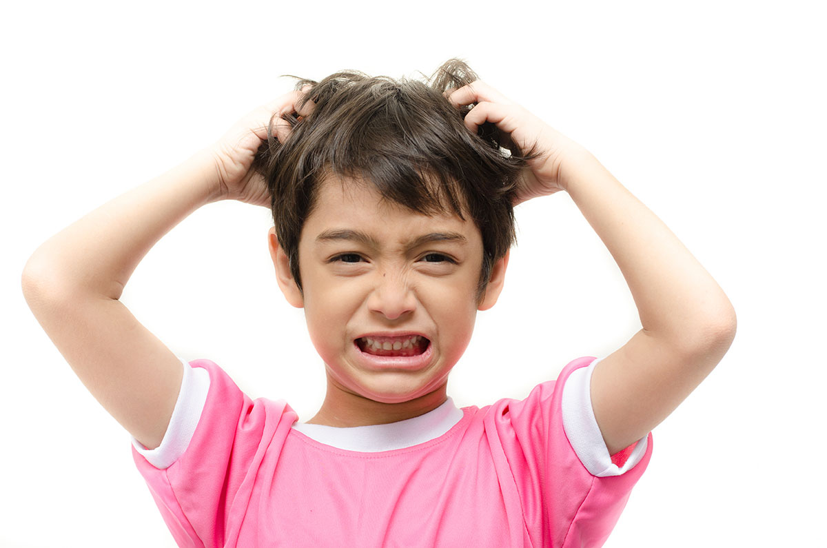 Getting Rid of Lice the Easy Way