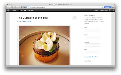 wordpress email sign up form final view