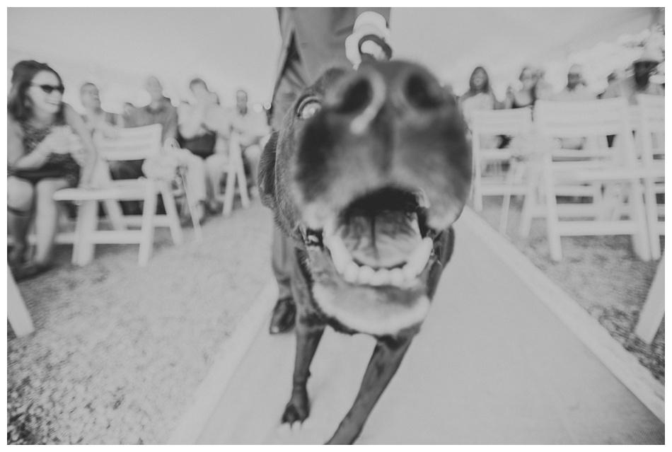 Wisconsin Wedding Lifestyle Photography ~ KJP_0500.jpg
