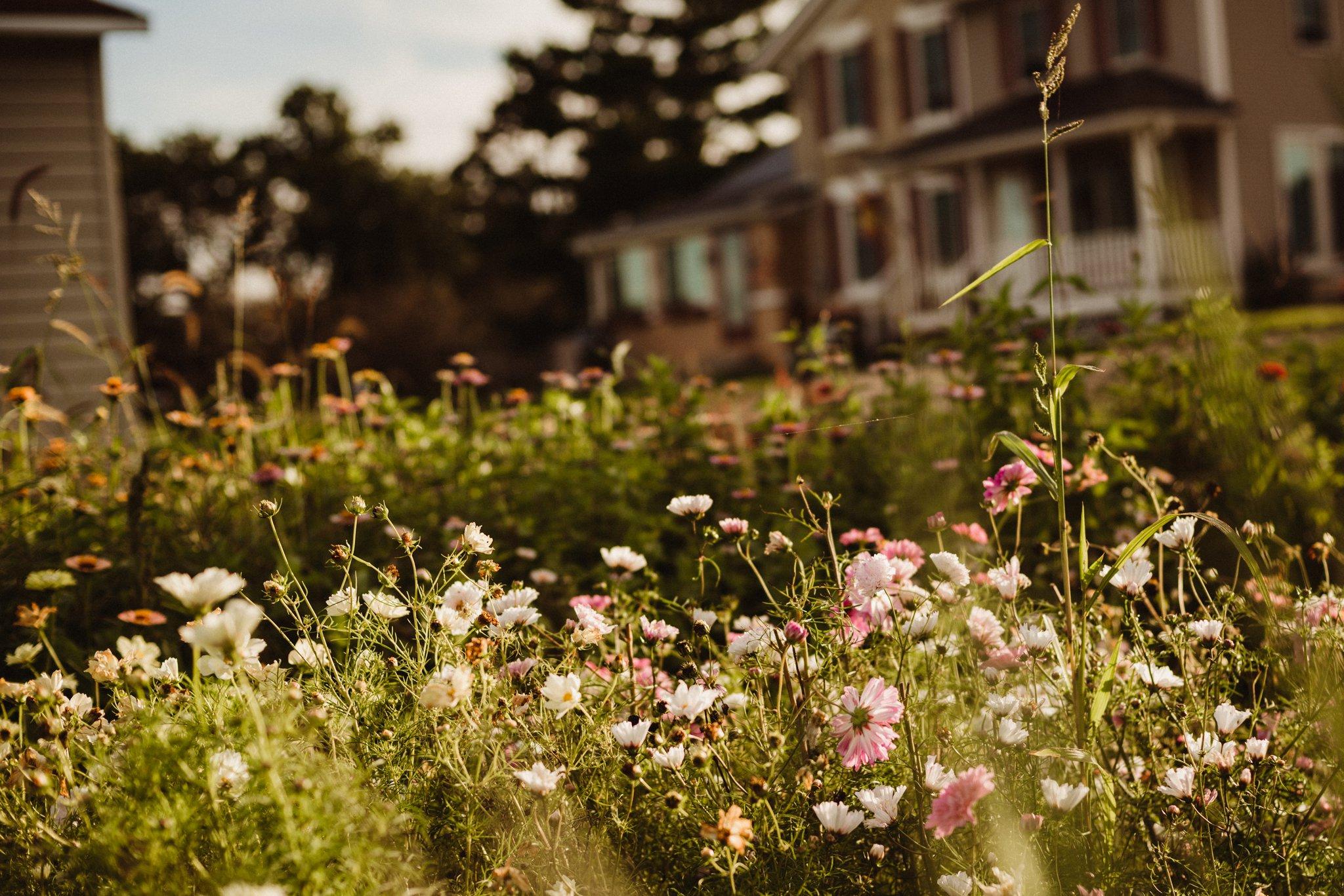 The Grove Flower Farm