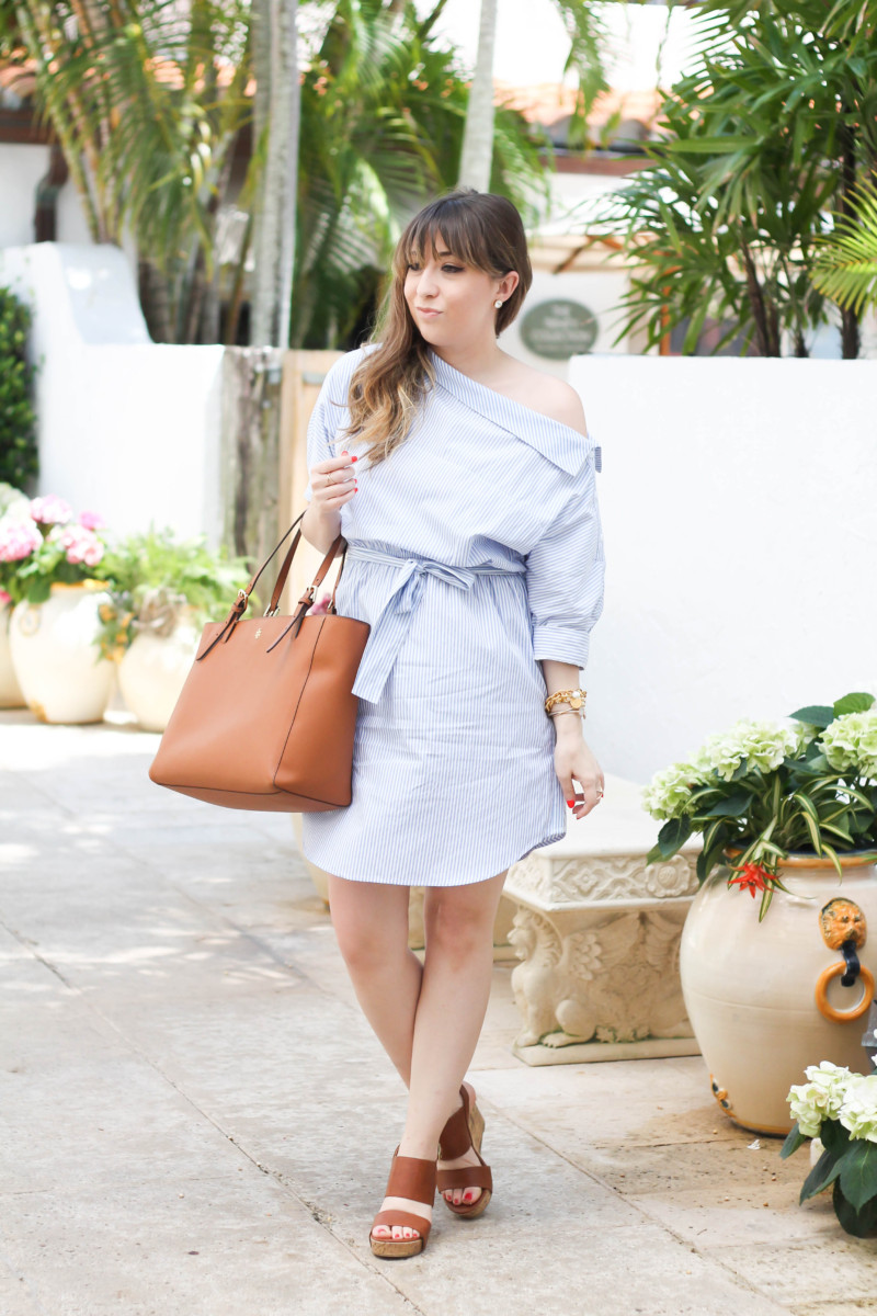 Blue and white stripe shirtdress-2