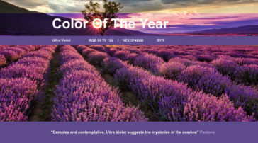 Color of the year blog by Asheville IrishGuy