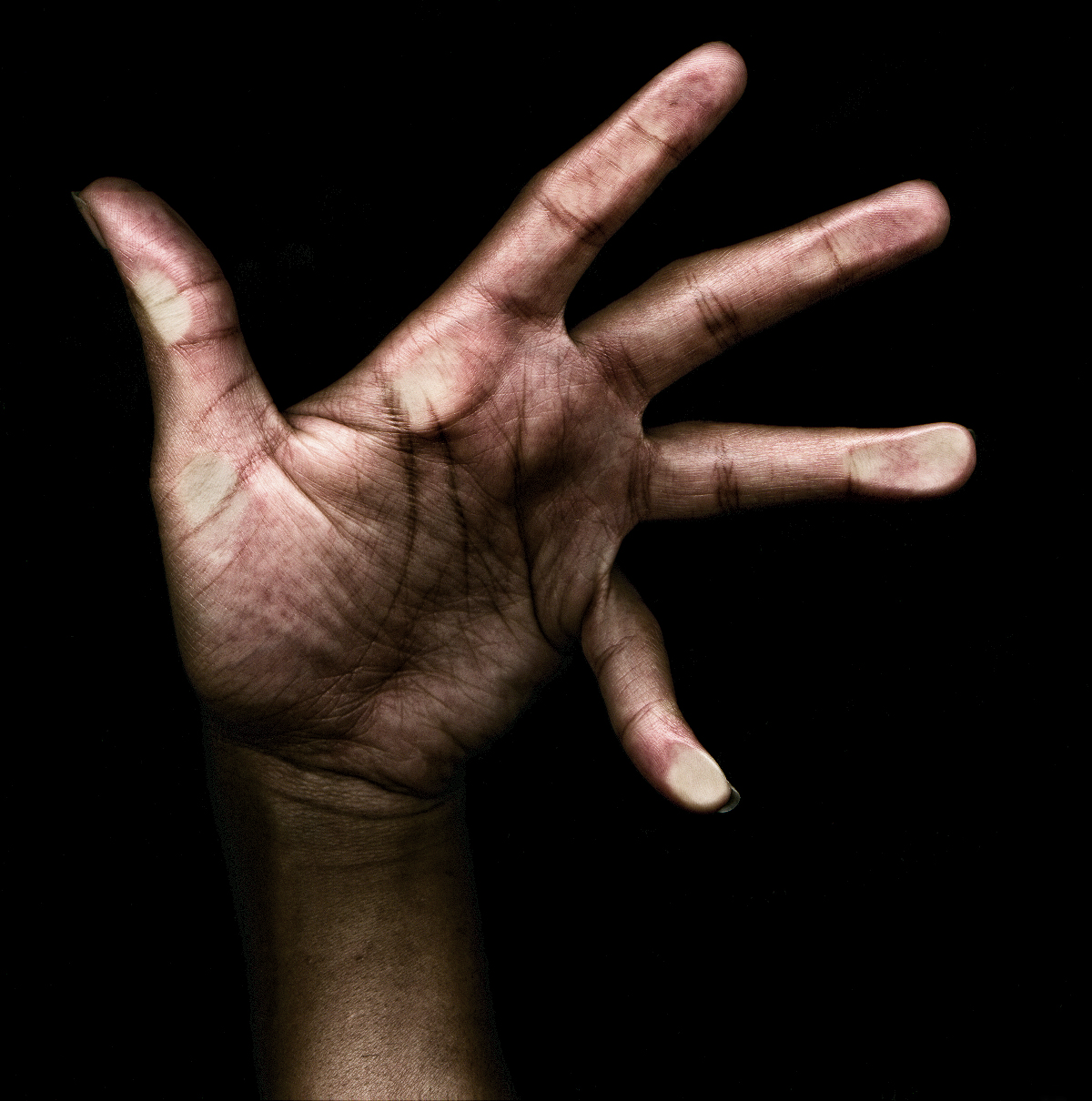 Photography Hand Study for CD Cover