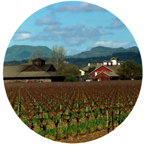 Frog's Leap Winery