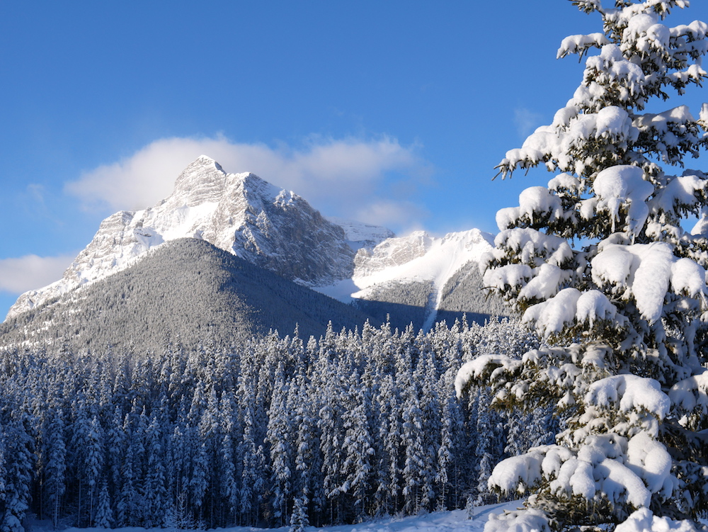 Traveling to Banff with kids - Make sure to check out a family friendly vacation to Kananaskis with kids.