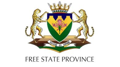 Photo of Application Open For The Free State Government Internship Programme 2020