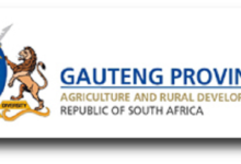 Photo of Applications Open For The Gauteng Department of Agriculture and Rural Development 2020 Bursaries