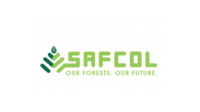 Photo of Applications Open For The SAFCOL Bursary Programme 2020