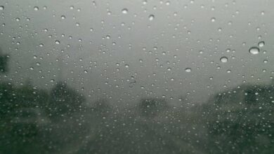 Photo of 10 Tips To Be Safe When Driving On A Rainy Day