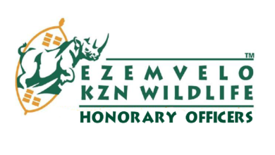 Photo of Applications Open For The KZN Wildlife: Internship Programme 2020
