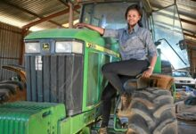 Photo of 10 Business Traits Young People Can Learn From 24 Year Old Farmer Njabulo Mbokane