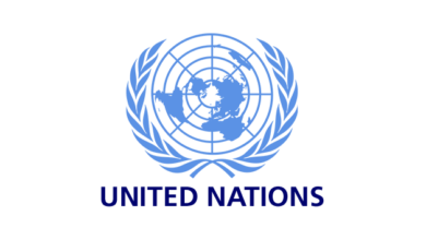 Photo of Applications Open For United Nations SA Project Management Internship 2020