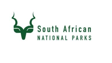 Photo of Applications Open For The SANParks Graduate / Internship Programme 2020