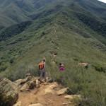 Image for Camellia Family Hike a Joyful Adventure