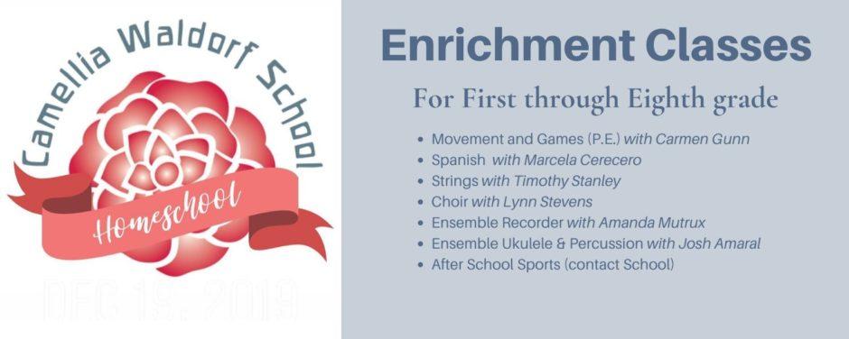 Winter 2020 Homeschool Web Banner(1)