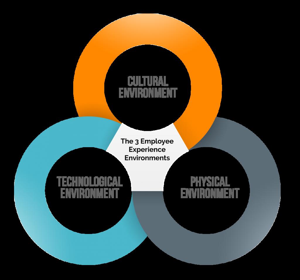 EmployeeExperience-3circle-orig12-16-15-1200x1119