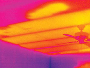 Don't Sweat It! Stay Cool with a Summer Infrared Scan