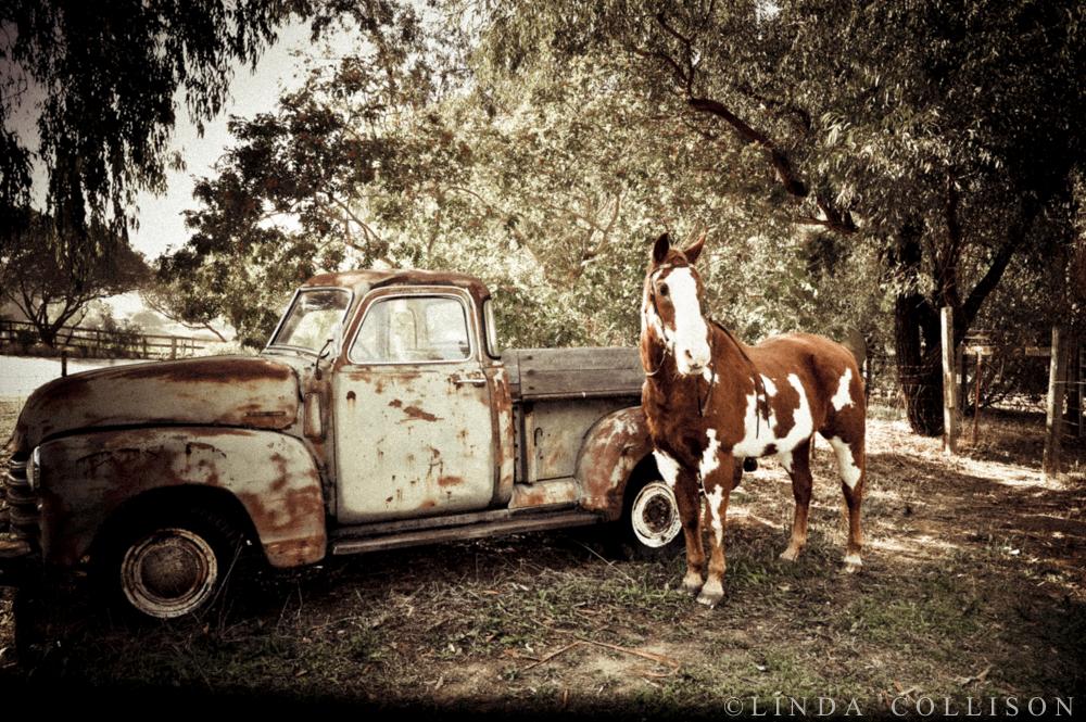 Dakota&Truck