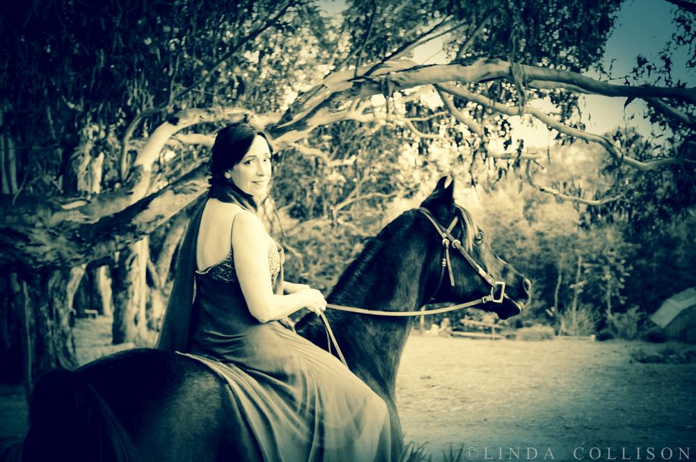 Goddess Horse Dream